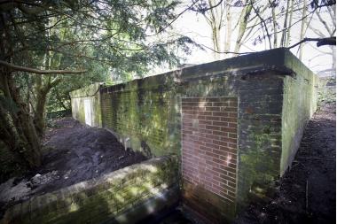 bunker20
