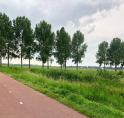 Nieuwe autoverbinding tussen Nesserlaan en Middenhoven/Waardhuizen