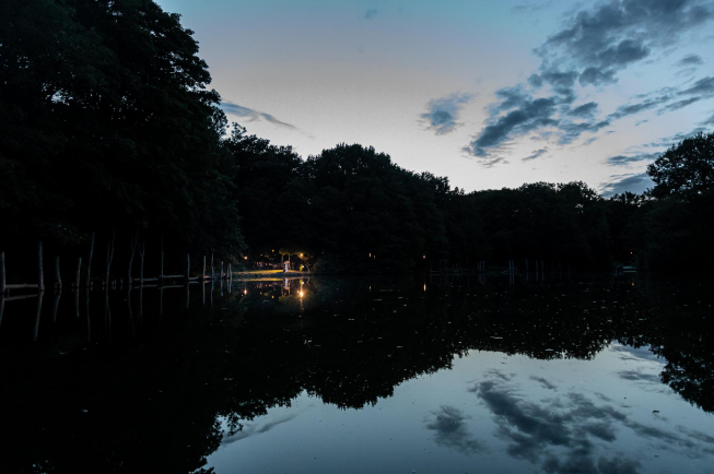 Openluchtbioscoop in Amsterdamse bos: Forest Filmfestival