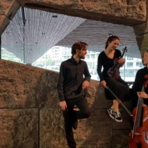 Het Artaria Trio
