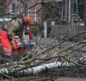 Storm Ciara in Amstelveen