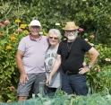 Het succes van Tuinvereniging Nesserlaan