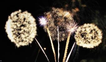 bbA wil vuurwerkoverlast terugdringen met detectiesysteem