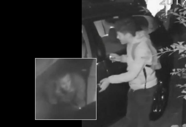 Politie deelt beelden van autokrakers