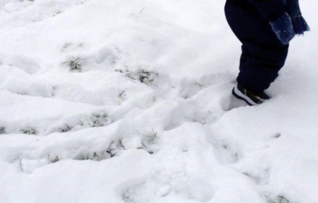 Trainingen afgelast door sneeuwval in Amstelveen