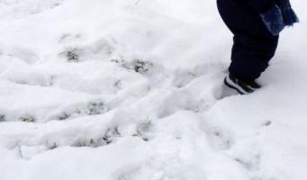 Middelbare scholieren eerder vrij vanwege sneeuw