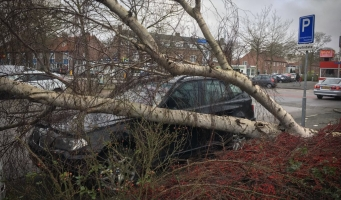 Code Rood: Storm houdt huis in Amstelveen
