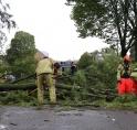 Brandweer Amstelveen rukt uit voor diverse stormschades