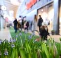 Stadshart Amstelveen zegt hallo tegen de lente