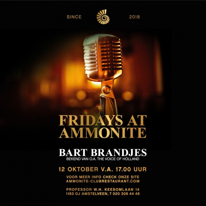 Fridays at Ammonite: Bart Brandjes