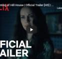 Michiel Huisman scoort met Netflix-hit 'The Haunting of Hill House'