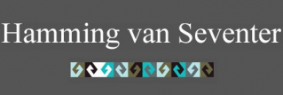 Hamming Van Seventer logo