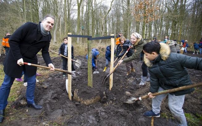 Boomfeestdag: Amstelveense bomen krijgen eigen webpagina