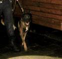 Inbraak-verdachten opgepakt met hulp politiehond