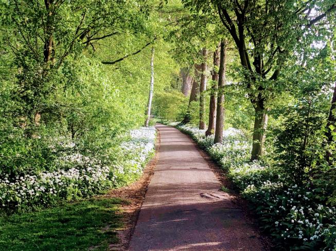 'Amstelveen nummer 1 parkstad van NL'