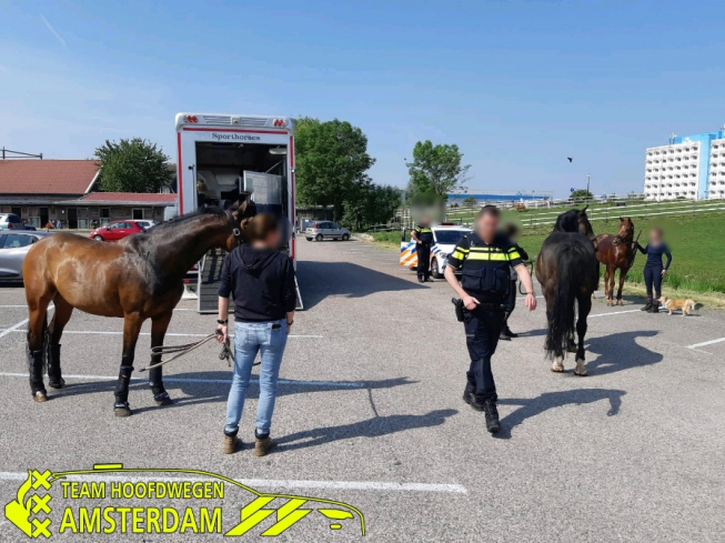 Paarden in paniek bij tankstation in Amstelveen